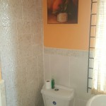 Traditional Jamaican bathroom ceramic tiles